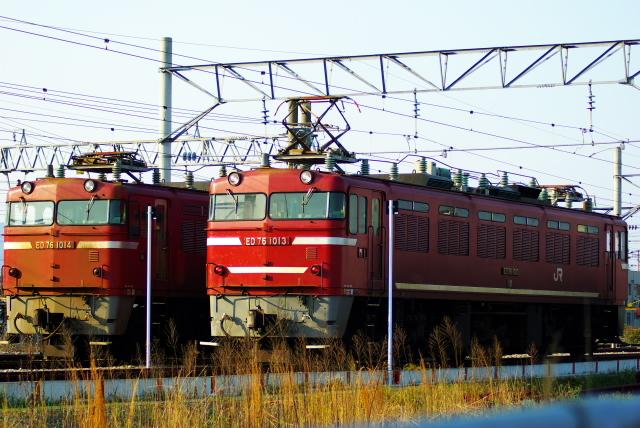 Imgp4509a