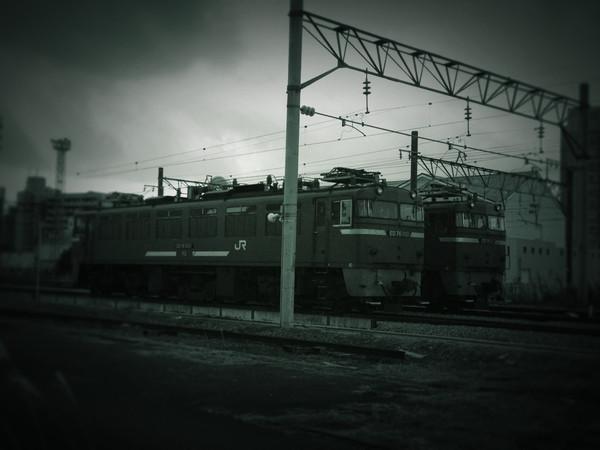 Img_1887