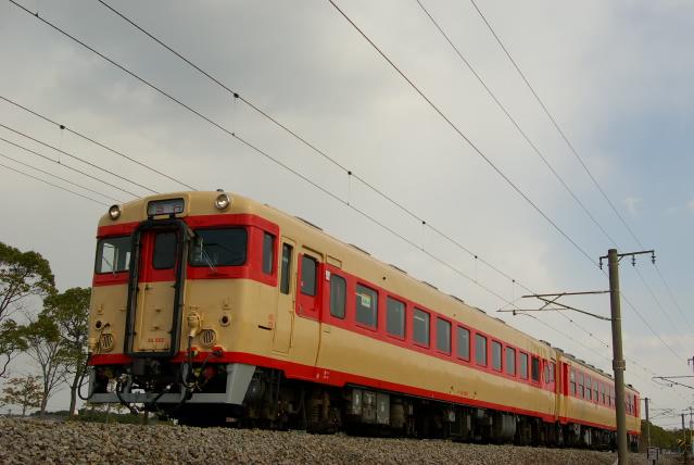 20100219a