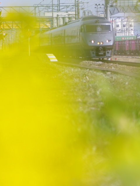 2011_02_19a
