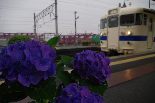 2011_06_11a