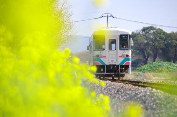2012_03_25a