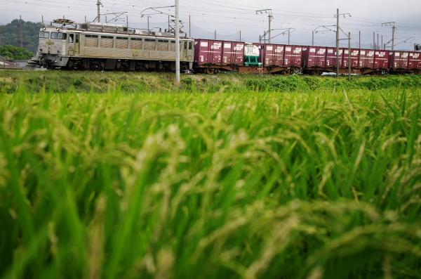 2012_09_09b