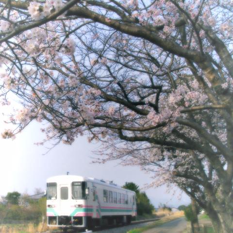 2013_03_23a