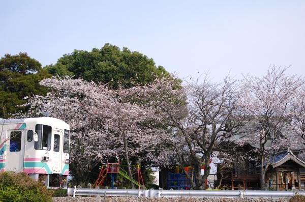2013_03_23b